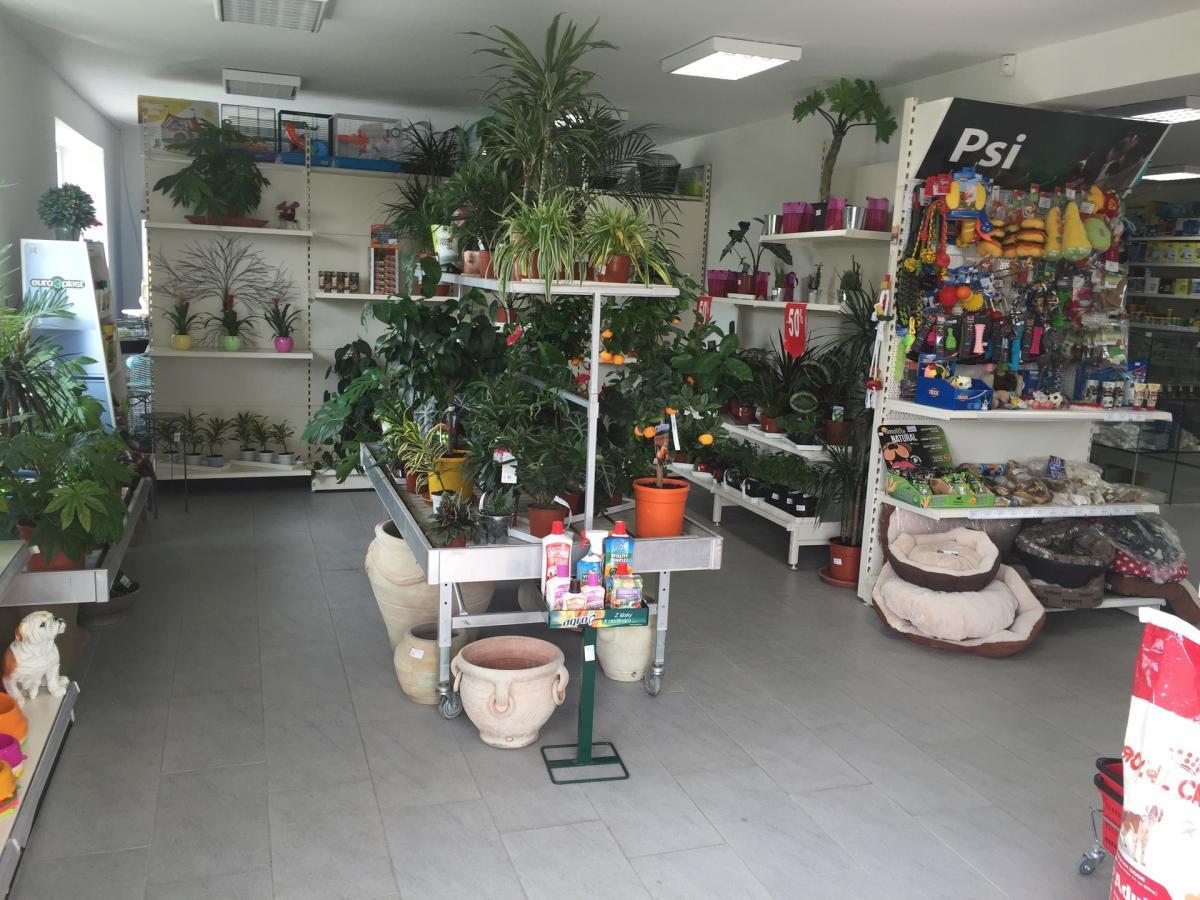 8f8b6515219c5 OASIS záhradné centrum, Topoľčany | Remesla&Sluzby.sk