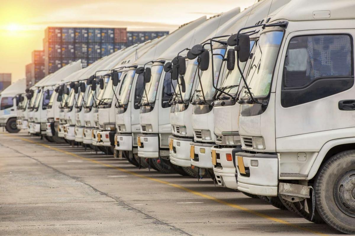STIGI-TRANS- expresná preprava tovaru Nové Zámky, 1