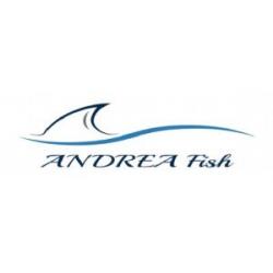 ANDREA Fish - tvorba web stránok Dubnica nad Váhom